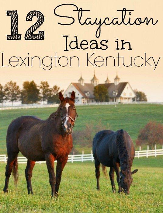 12 Staycation Ideas in Lexington Kentucky
