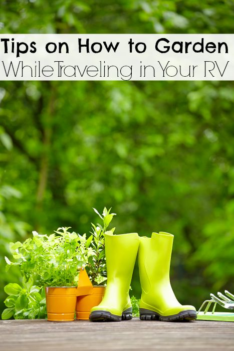 Tips on How to Garden While Traveling in Your RV