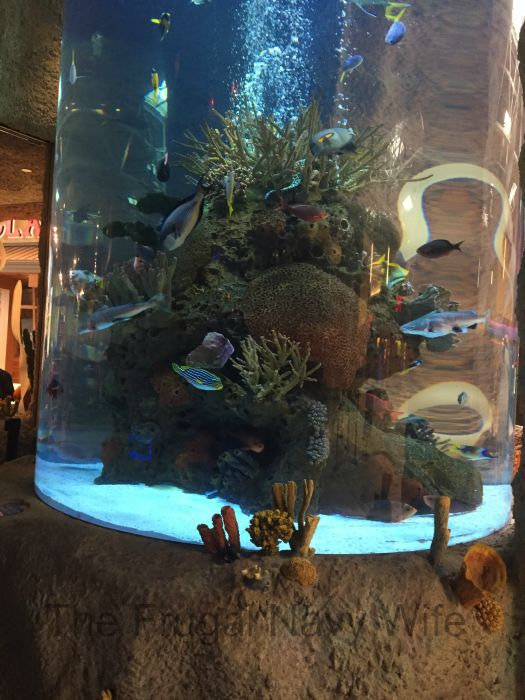 Aquarium Restaurant Fish Tower