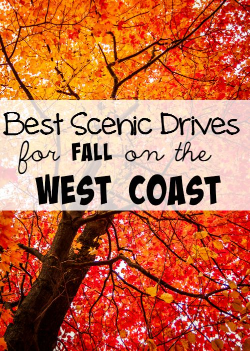 Best Scenic Drives for Fall on the West Coast