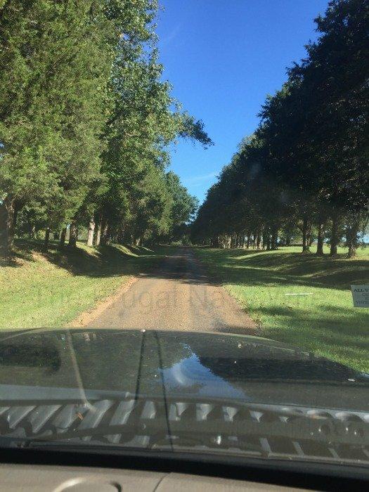 Sam Davis House – Smyrna, Tennessee Driveaway