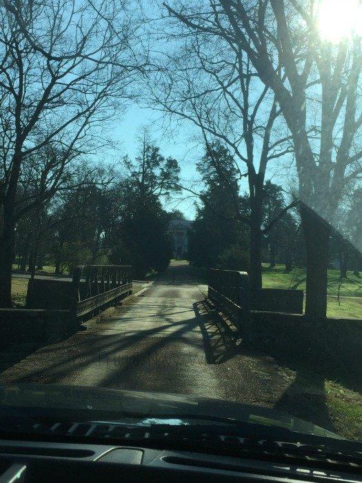 Belle Meade Plantation - Nashville, Tennessee Driveway