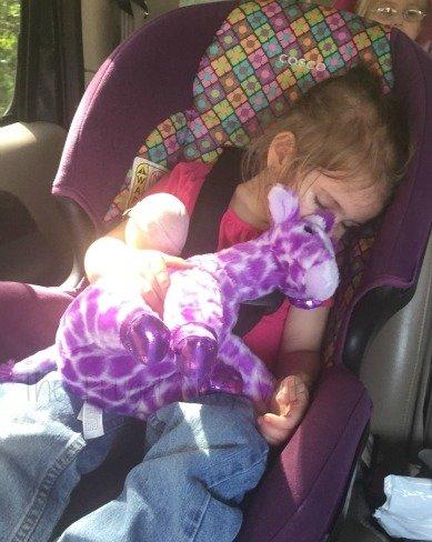 Nashville Zoo - Nashville, Tennessee Sleeping Birthday Girl