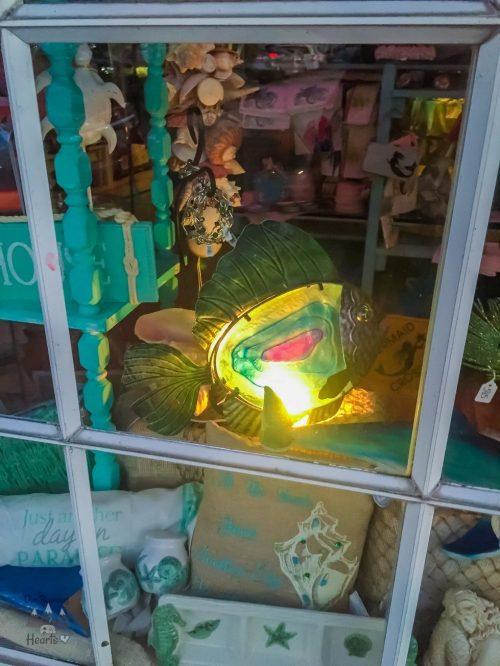Venice Florida Shopping – Venice Ave Shops16