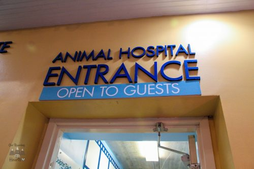 Clearwater Marine Aquarium Animal Hospital