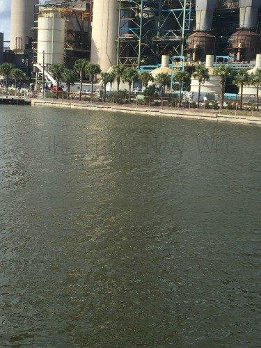 Manatee Viewing Center - Apollo Beach Florida Main Water Area
