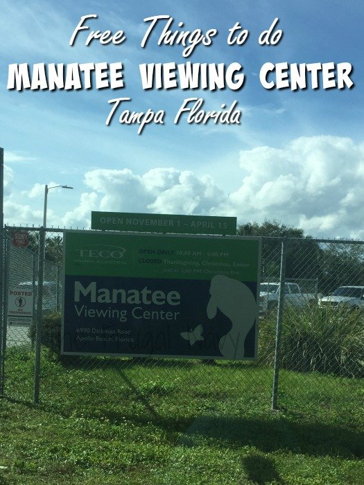 Manatee Viewing Center - Apollo Beach Florida