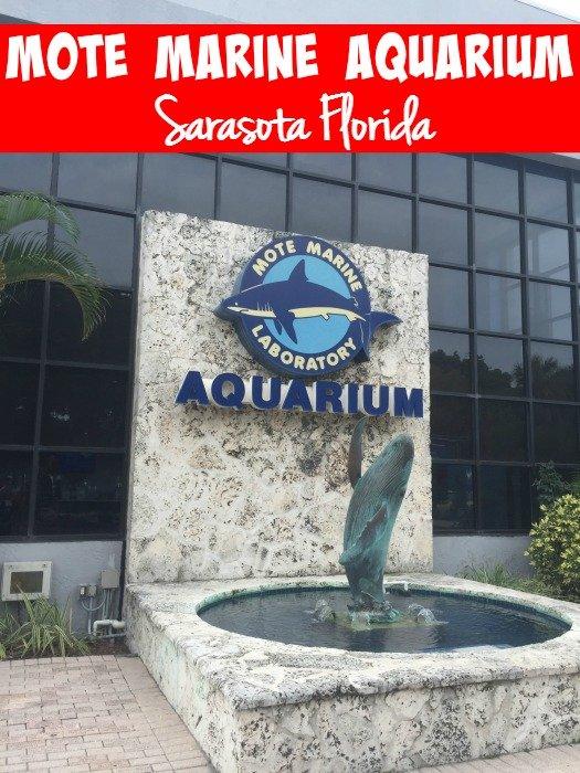 Mote Marine Aquarium - Sarasota Florida