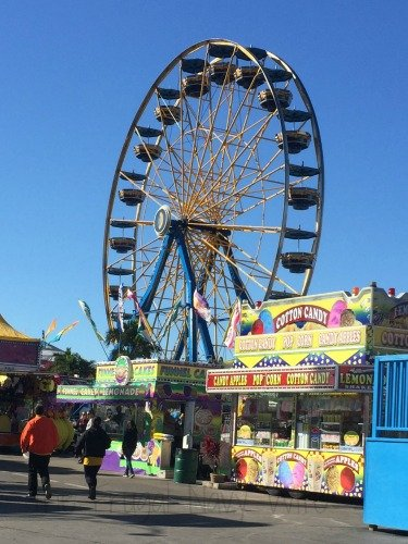 The Florida State Fair - Tampa Florida Ferris Wheel