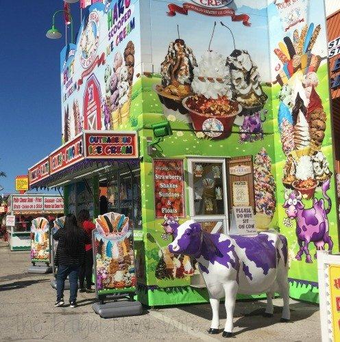 The Florida State Fair - Tampa Florida bright Food