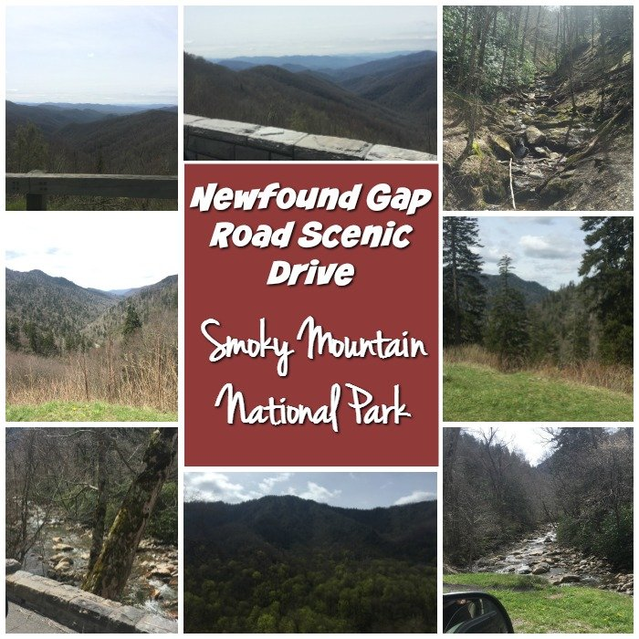 Newfound Gap Road Scenic Drive Smoky Mountain National Park