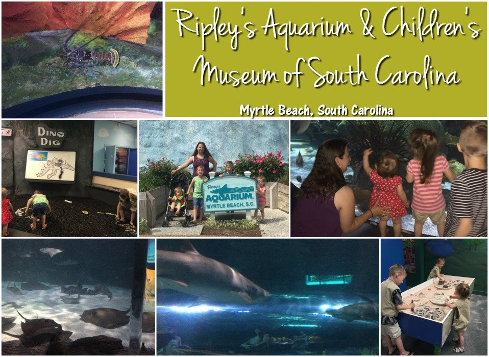 Ripley's Aquarium & Children's Museum of South Carolina