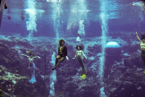 Weeki Wachee Mermaids Show
