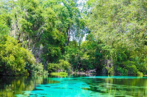 Weeki Wachee River Boad Ride