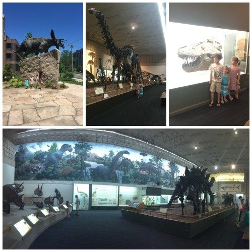June Travel Update Yale Peabody Museum