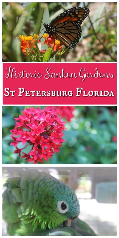 Italian Restaurants Downtown St Petersburg Florida