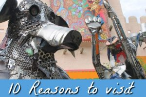 Homeschooling in Florida – 10 Reasons to visit Busch Gardens Tampa Fl