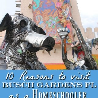 homeschooling-in-florida-10-reasons-to-visit-busch-gardens-tampa-fl