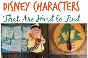 Top 10 Places & Tips to Meeting Disney Characters That Are Hard to Find