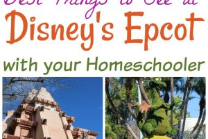 Top Things to See at Disney's Epcot with your Homeschooler