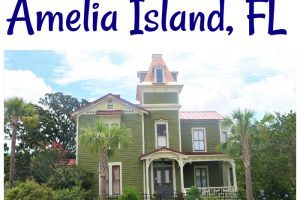 Must See Things to do When VIsiting Amelia Island, Florida