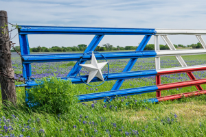 Top 51 Things to do in Texas & Other Tips for Your Texas Vacation