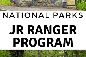 The Ultimate Guide to The National Park Service Junior Ranger Program & Junior Ranger Badges
