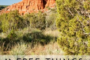 11 Free Things to do in Amarillo TX