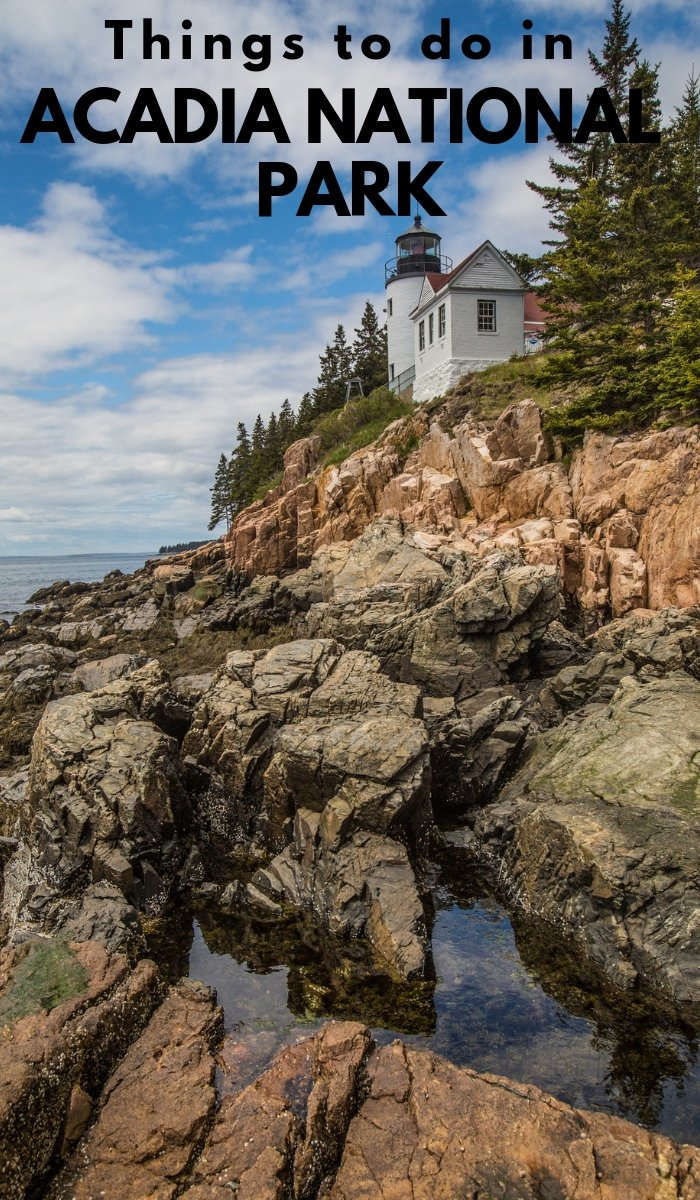 There are miles and miles of forest and vegetation to explore at Acadia National Park. Check this list of Acadia National Park things to do.  #nationalpark #acadianationalpark #ourroaminghearts #thingstodo #maine | Things to do | Acadia National Park | National Parks | Main Travel | Maine National Parks