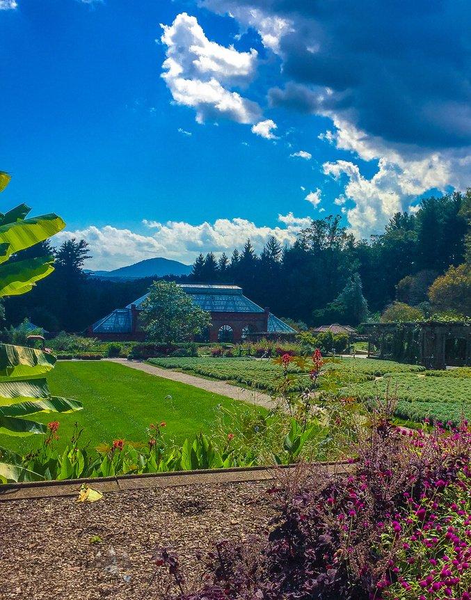 Biltmore House Tour + Biltmore Estate Gardens