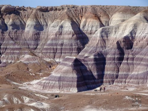 Petrified Forest National Park Arizona - Blue Mesa