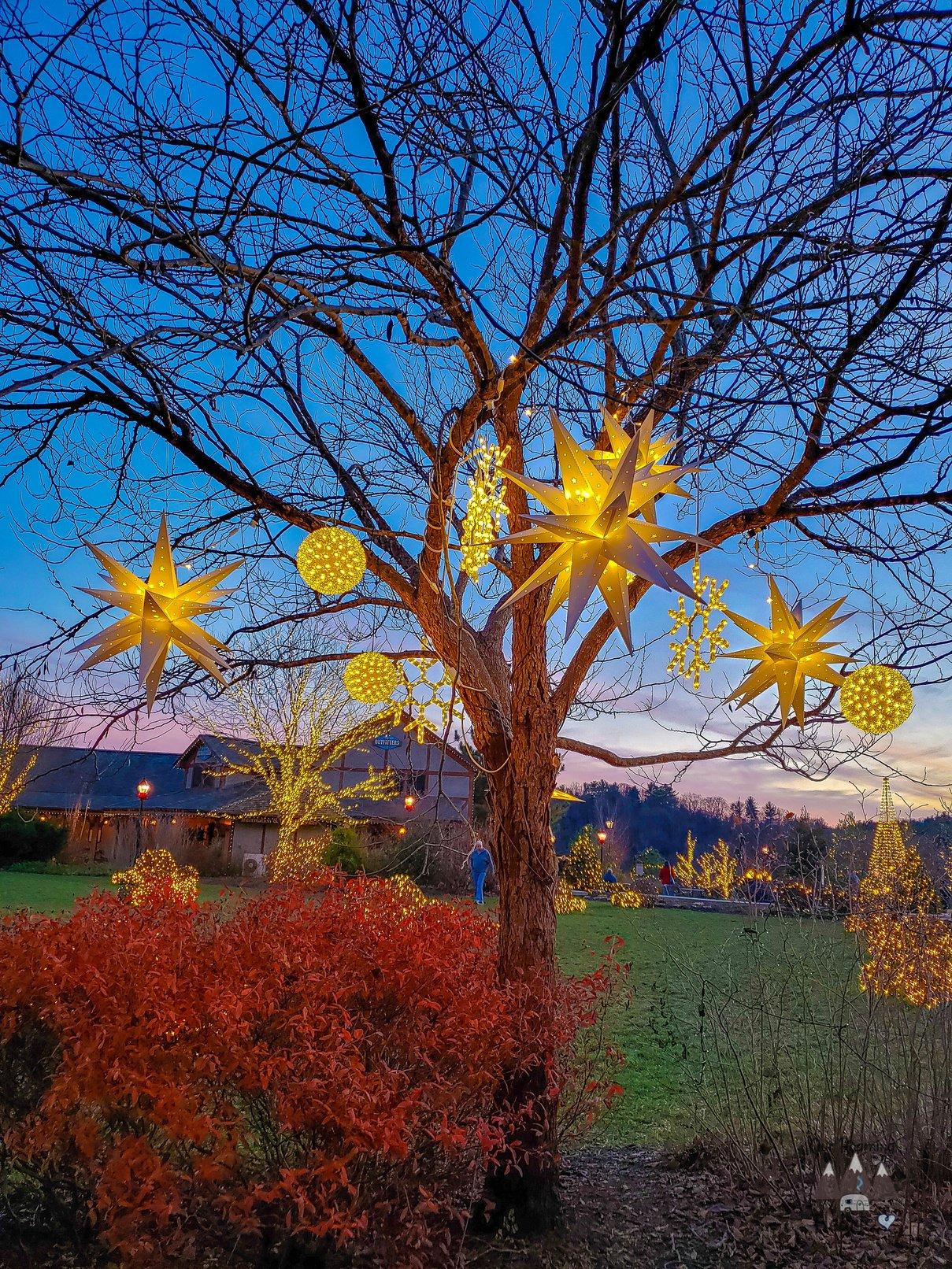 Biltmore Estate at Christmas Antler Villiage