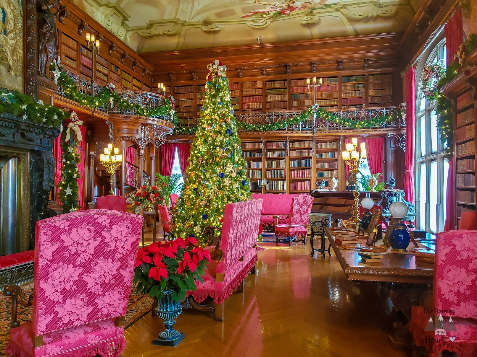 Bilmore Estate at Christmas Library