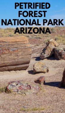 Some would mark the Petrified Forest National Park as one of the top places to visit in the Phoenix area. Take a look in the park here. #arizona #nationalpark #petrifiedforest #ourromainghearts | National Park Sites | Petrified Forest | Arizona National Parks | Arizona Travel