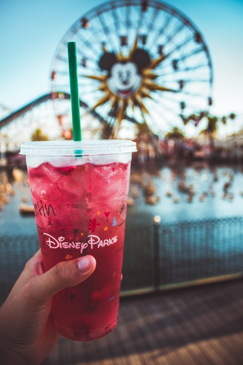 free disney tickets and disney rides