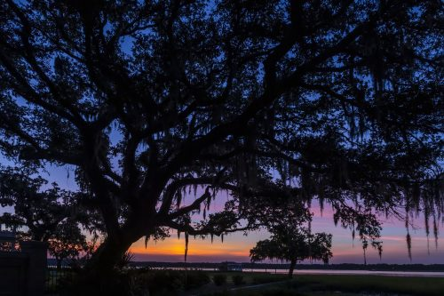 Free Things to do in Beaufort SC